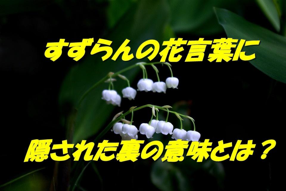 すずらんの花言葉ってどうとらえる?裏に隠された花言葉の意味とは?