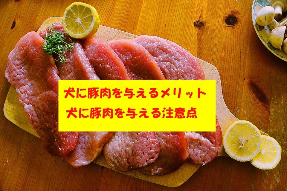 犬に豚肉を与える人が多い理由☆犬に豚肉を与えるメリットや注意点とは?