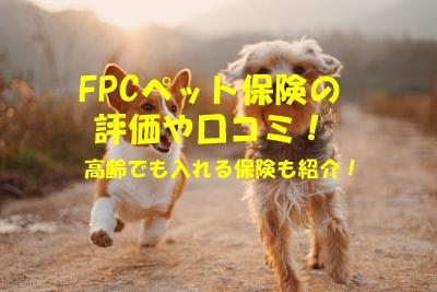 ペット保険fpcの口コミや評価!高齢や待機期間なしで入れる保険も紹介!